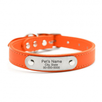 Orange Collar with Brass Plate ID Tag